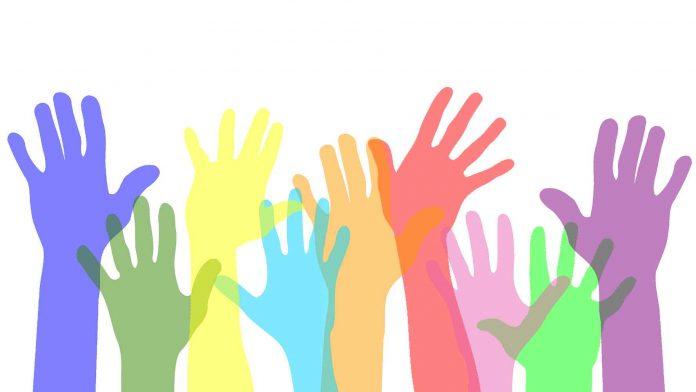 Empreendedorismo Colaborativo e as novas comunidades em rede