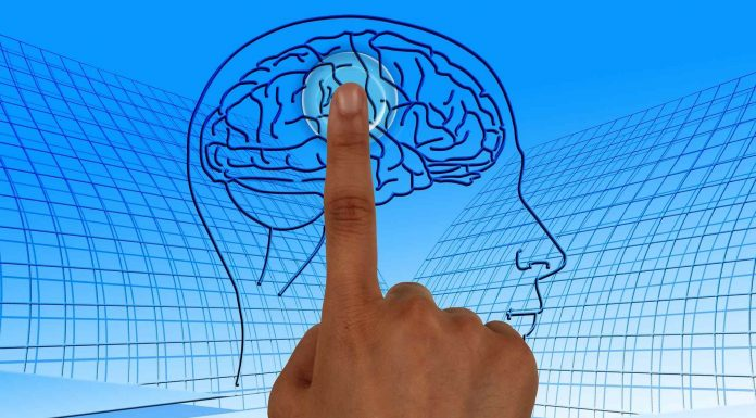 Utilize os diferentes níveis do cérebro para uma comunicar melhor