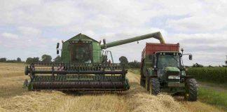 fileira agroalimentar gera novos negócios